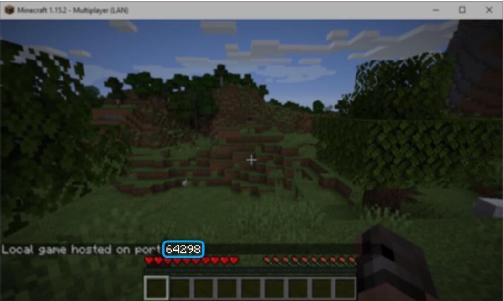 Minecraft-Game-port-number